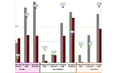 A NEW PERSPECTIVE ON THE CONTROL OF POST – HARVEST DECAY IN STONE FRUIT